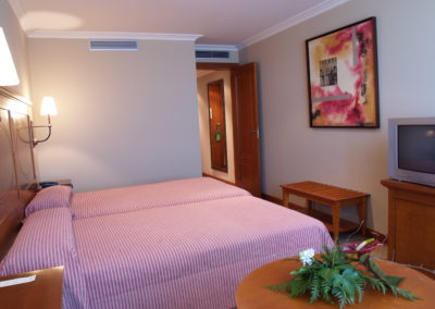 Habitación Hotel Villava Pamplona